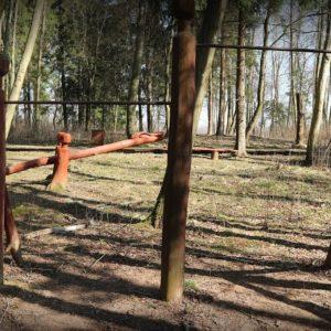Daučionių rekreacinis parkas 4